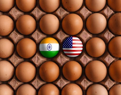 NRIs: Balancing Investments between the US and India